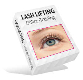 Lash Lifting Wimpernlifting Online Schulung Training Lashes Wimpern e-book
